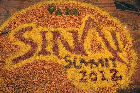 Sinai 2012